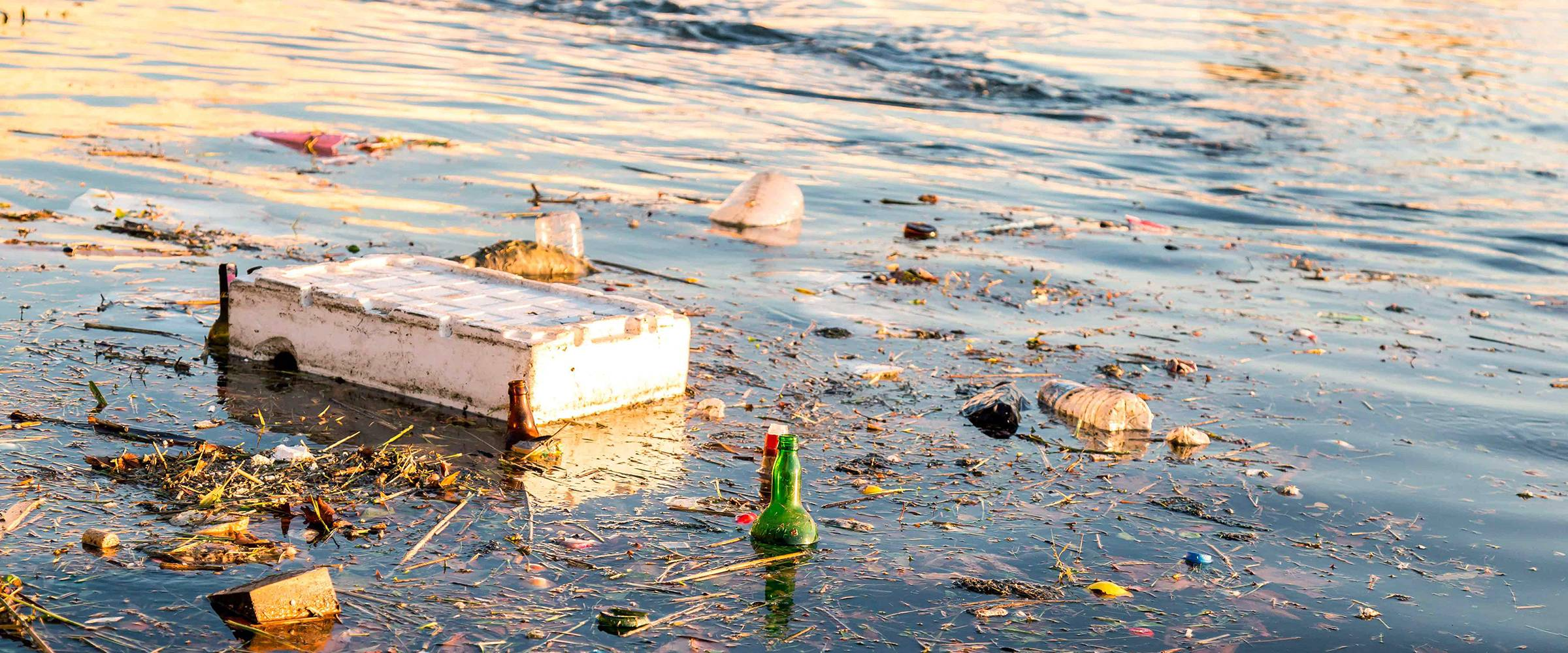 Plastic waste in the Danube consists mainly of packaging and PET bottles